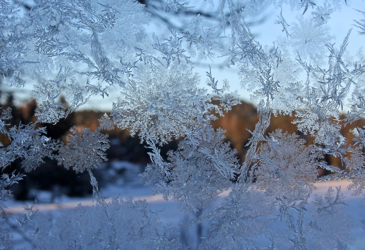 A peak through a frosty window