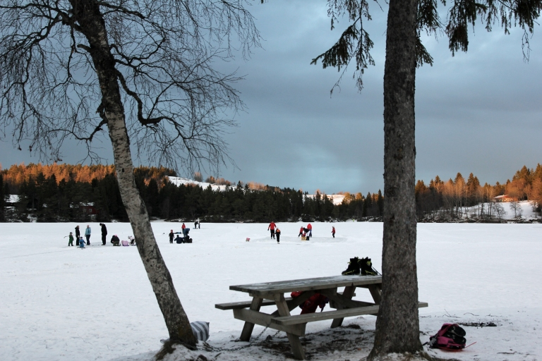 Ice skaters at the pond
