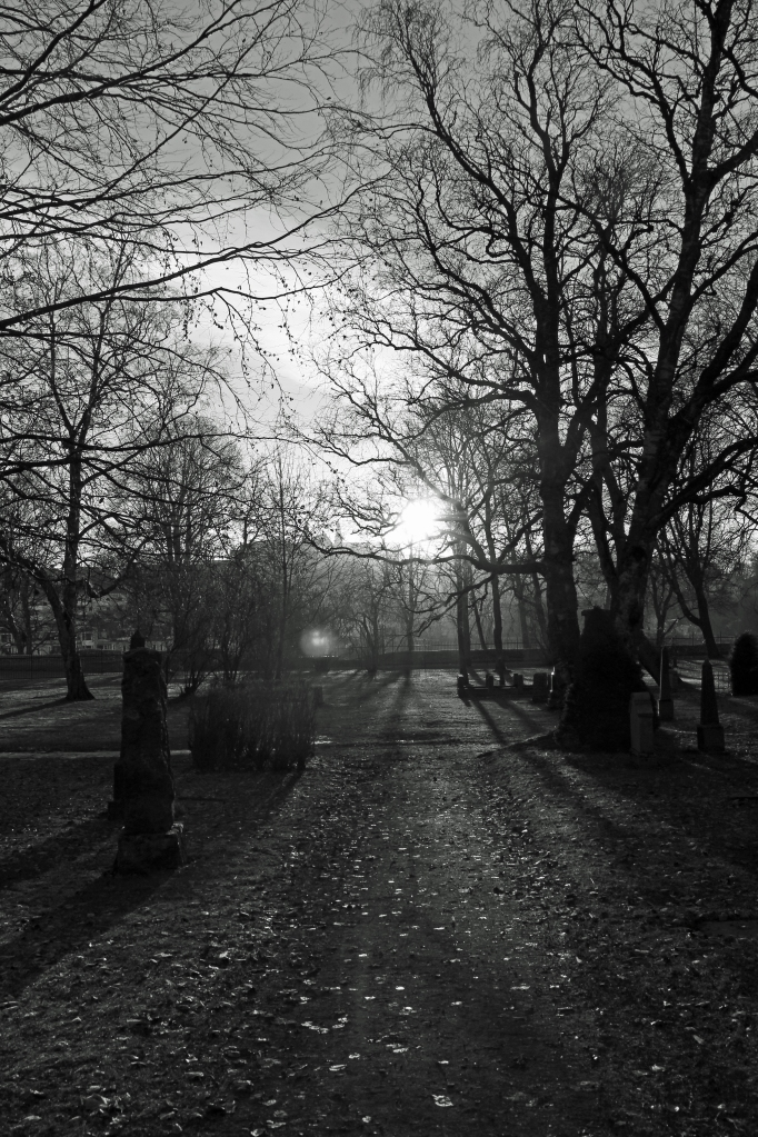 winter light into the cemetery