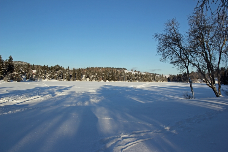 shadows on the snowcovered pond