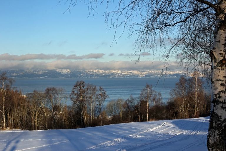 winterview towards the fjord