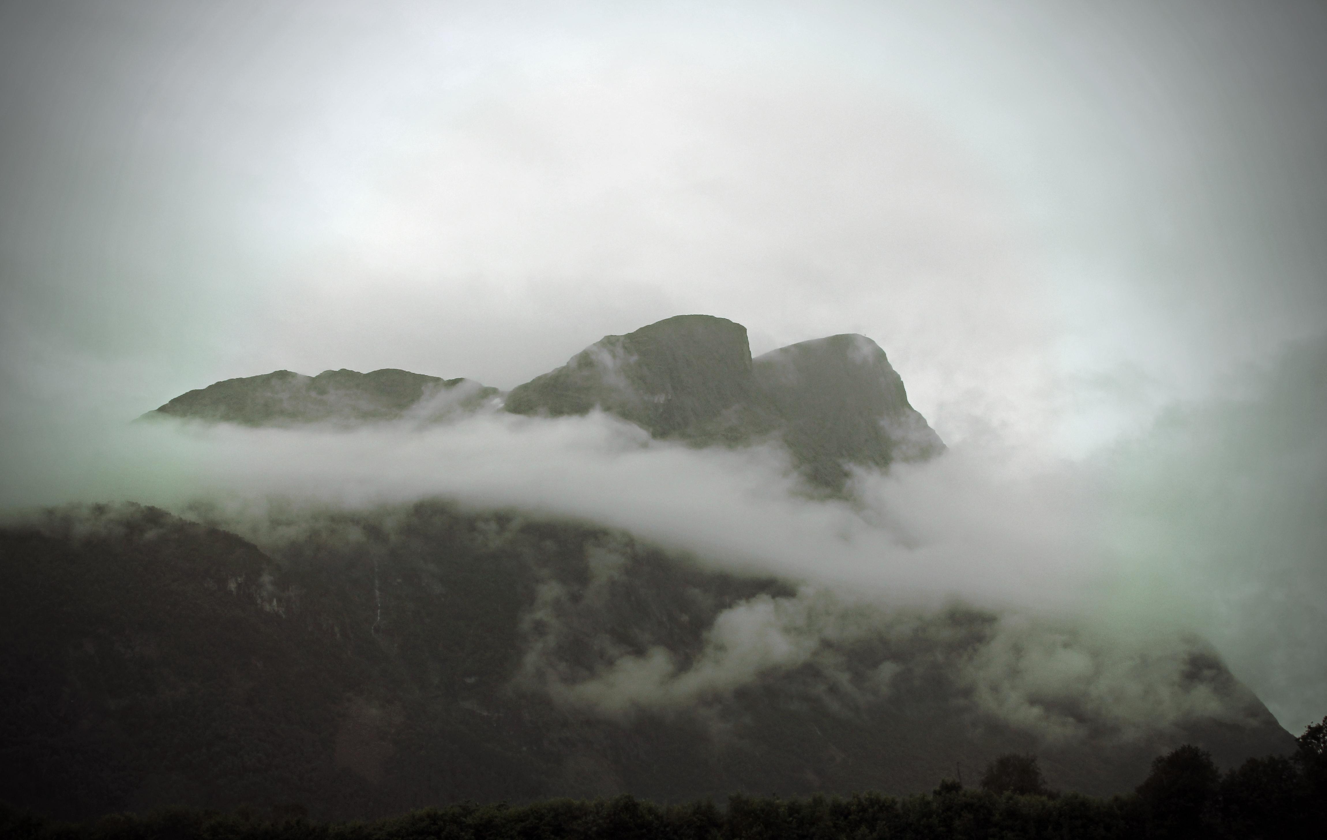 Fog and rain – ingaphotography