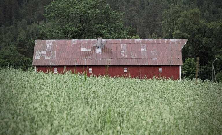 the barn behind the field