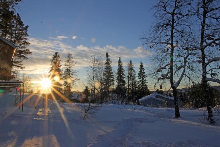 december sun and snow