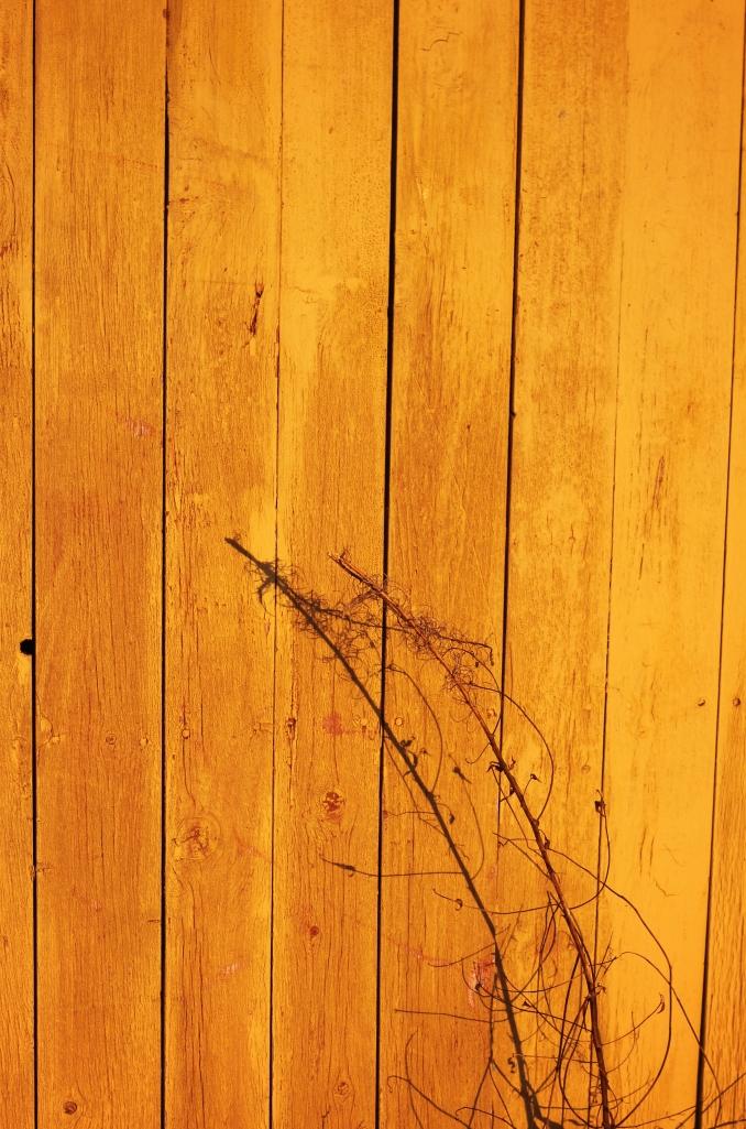 shadows on old wall