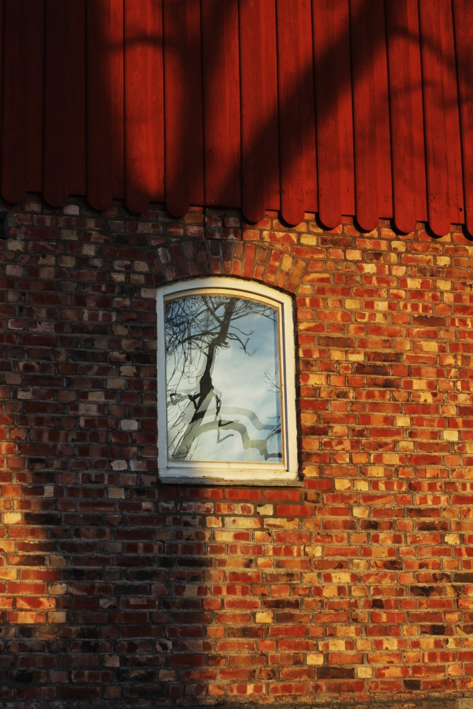 Shadows on the stable wall