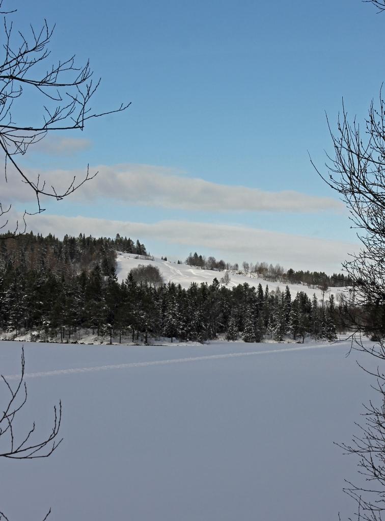 snow by Kyvannet