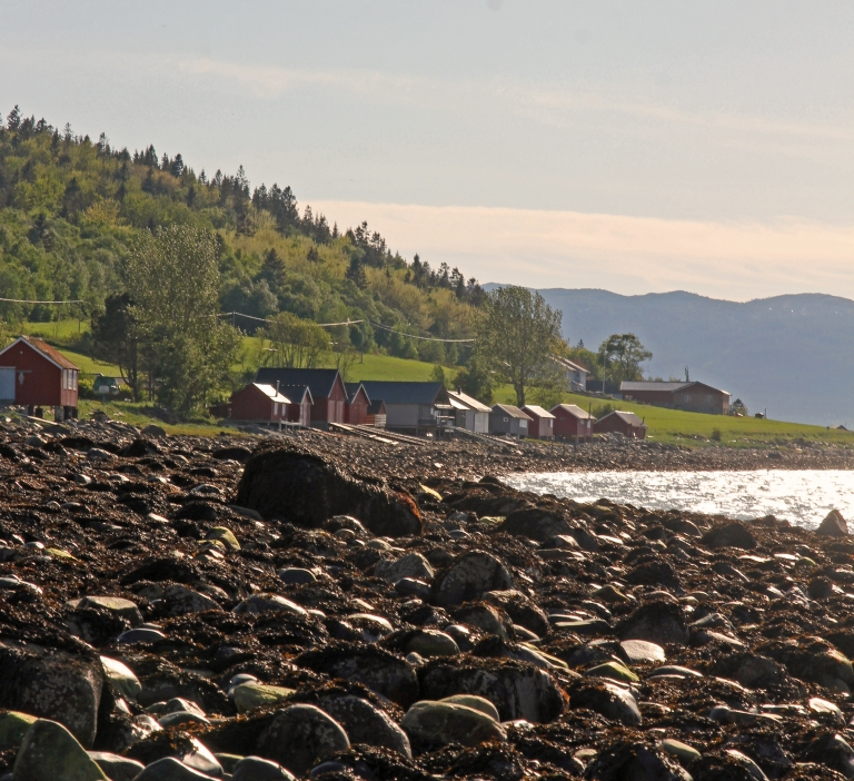 boat houses and cabins