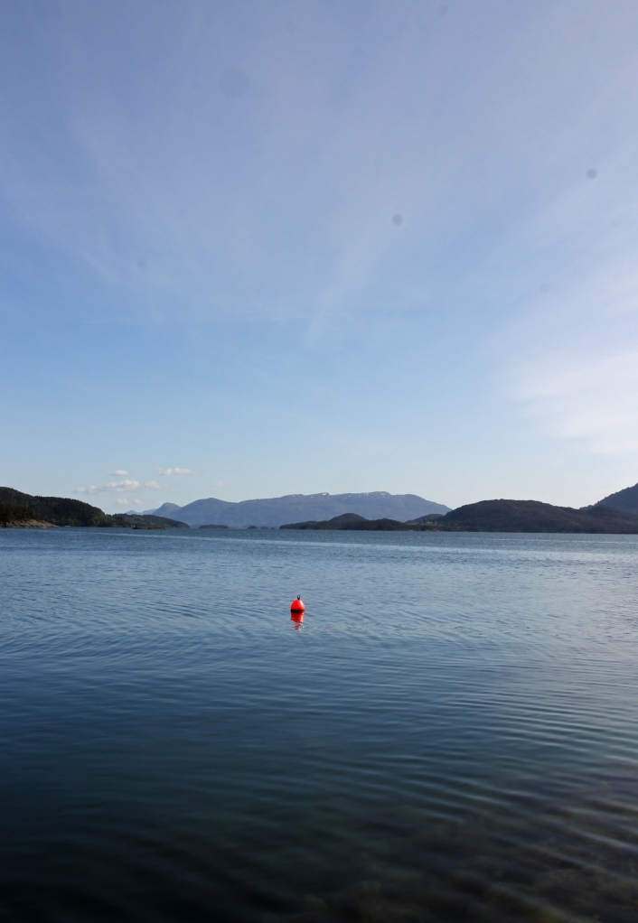 buoy in the water