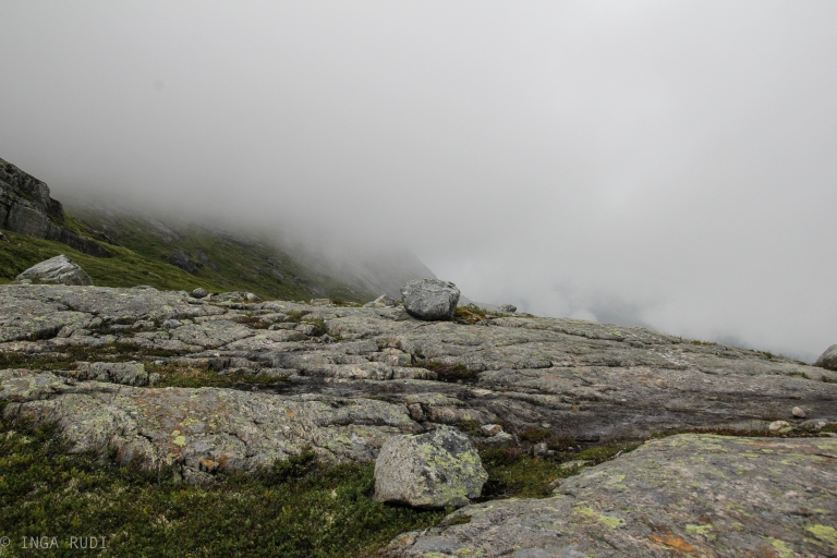 more foggy mountains