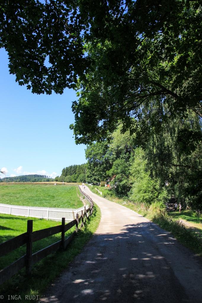 idyllic gravel road