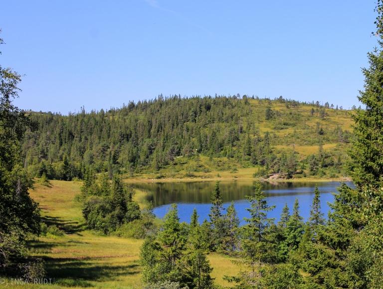 Vintervatnet end of July