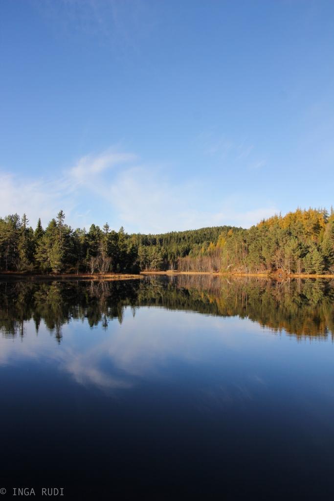 Beautiful late autumn day