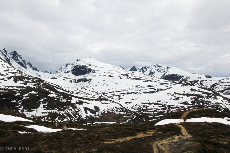 mountain tops sognefjellet2
